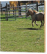 Dancing Pony Wood Print