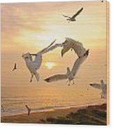 Dancing Seagulls Wood Print