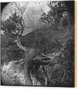 Dancing Wind Wood Print