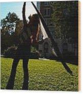 Dancing With The Sunset - Philadelphia - Pensilvania - Sunset Wood Print