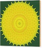 Dandelion Abstract Wood Print