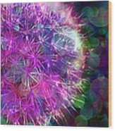 Dandelion Party Wood Print by Judi Bagwell