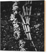 Dandelion Wreath Wood Print