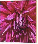 Dandie Alexa Wood Print