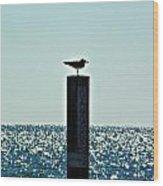 Dangerous Bird Perch Wood Print
