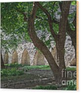 Danish King's Garden  Tallinn Wood Print