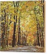 Dappled Light Wood Print