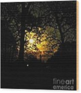 Dark Heart Moon Wood Print