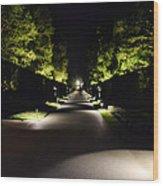Dark Pathway Wood Print