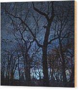 Darkness Wood Print