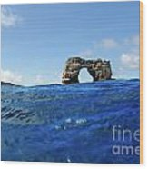 Darwin's Arch By Sea Level Wood Print