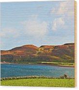 Davaar Island - Campbeltown Wood Print