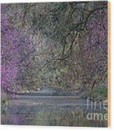 Davis Arboretum Creek Wood Print by Diego Re