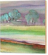 Dawn 22 Wood Print