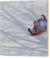 Dawn Flora Sledding 12812c Wood Print