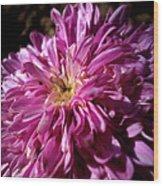 Dawn Flower Wood Print