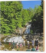 Day At Kent Falls State Park Wood Print