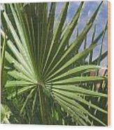 Day In Arizona 2 Wood Print