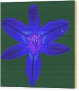Day Lily Abstract Wood Print