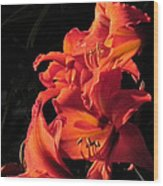 Day Lily Flame Wood Print