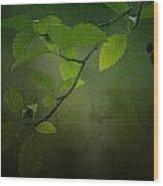 Daybreak Tiptoes In Wood Print by Bonnie Bruno