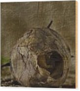 Dead Rosebud Wood Print