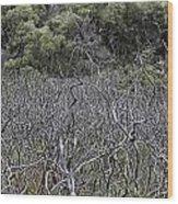 Dead Tree Garden Wood Print