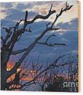 Dead Trees At Sunrise Wood Print
