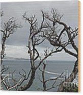 Dead  Trees Wood Print by Yurix Sardinelly