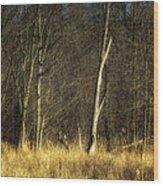 Deadwood Napanee Wood Print