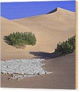 Death Valley Salt Flat Wood Print