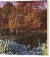 Deciduous Woods, In Autumn With Frost Wood Print by The Irish Image Collection
