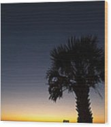 Deck Chair And Palm Tree At Sunset At The Gulf Of Mexico Wood Print