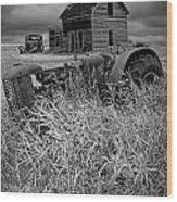 Decline Of The Small Farm No.2 Wood Print