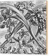 Decorative Engraving Wood Print