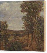 Dedham Vale Wood Print