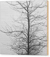 Deep Fog Wood Print