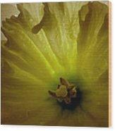 Deep Inside The Daffy Wood Print