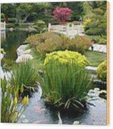 Deep Panorama Of Japanese Garden And Koi Wood Print