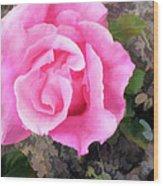 Deep Pink Watercolor Rose Blossom Wood Print
