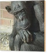 Gorilla Deep Thoughts Wood Print
