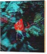 Deep Waters Wood Print