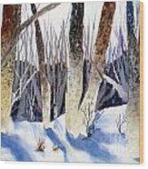 Deep Woods 1 Wood Print