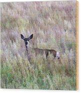 Deer Colors Wood Print