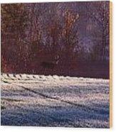 Deer In The Distance Wood Print