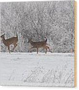 Deer Parade Wood Print
