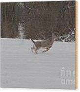 Deer Run Wood Print
