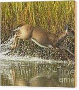 Deer Running Through The Salt Marsh Wood Print