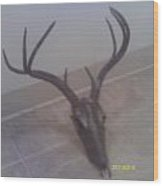 Deer Skulpture Wood Print by Hunter Quarterman