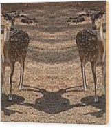 Deer Symmetry  Wood Print